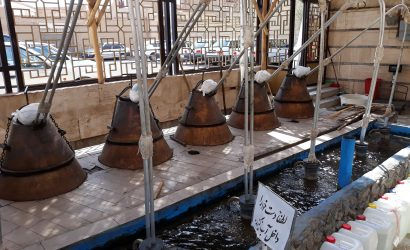 distillation eau de rose